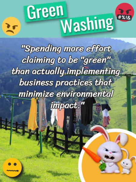 "Image text defines ""Greenwashing""."