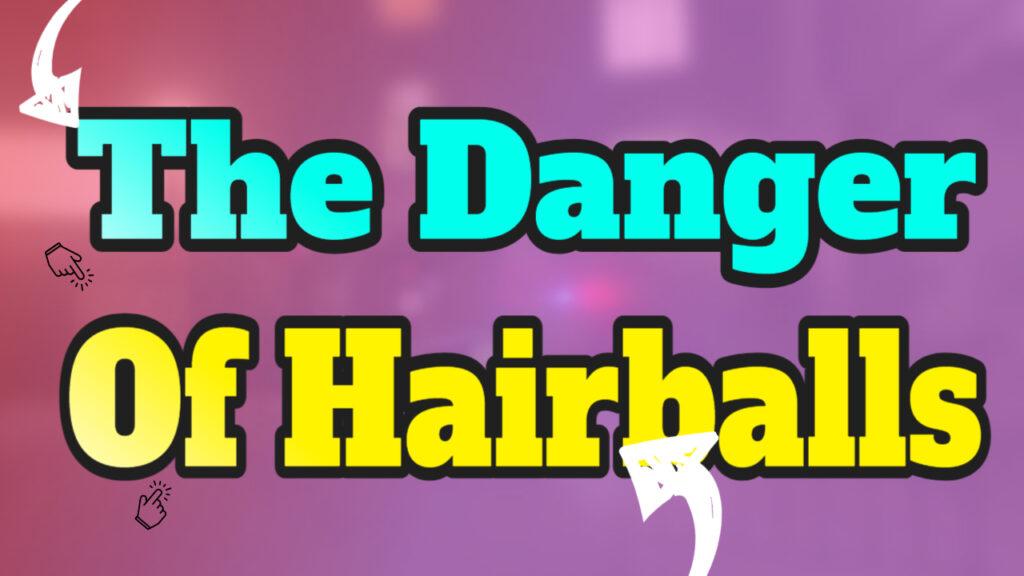 danger of hairballs picture