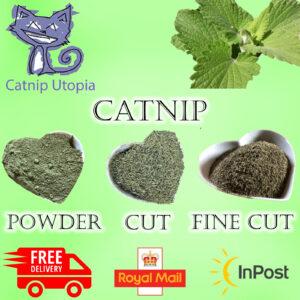 All-types-of-catnip