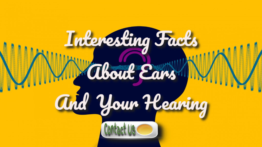 interesting facts about your hearing