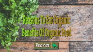 Benefits Of Organic Food